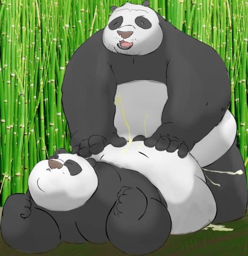 feet tigress kung fu panda My little pony flim and flam