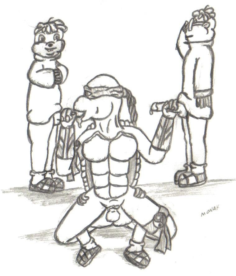 turtles milo de venus ninja Lord marksman and vanadis valentina