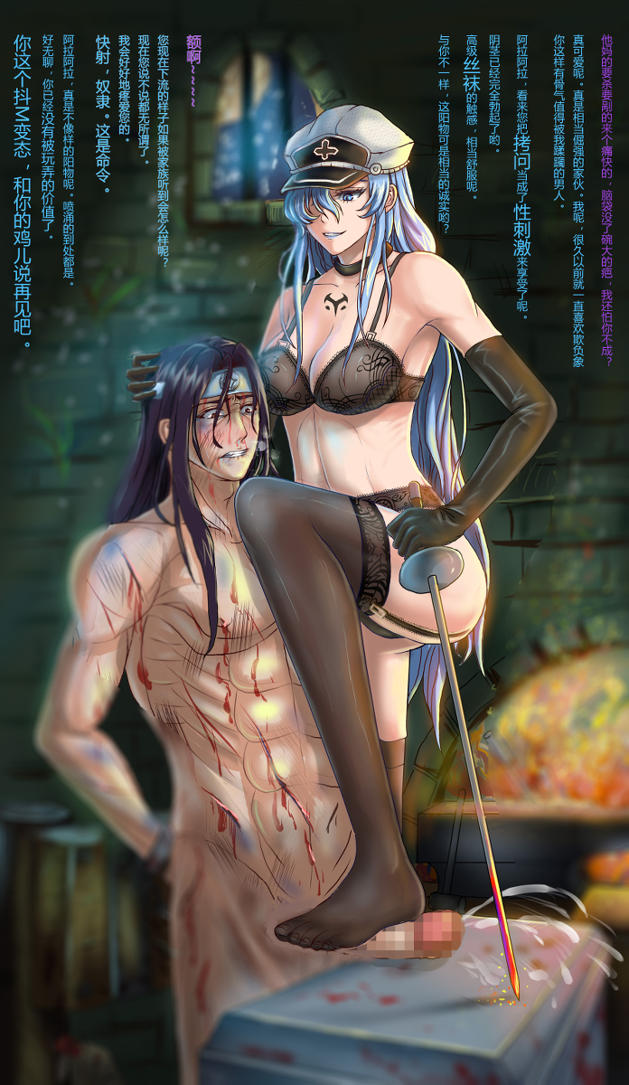 tatsumi and fanfiction kill ga akame esdeath Monster girl encyclopedia kenkou cross